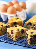 Blueberry and hazelnut tray bake cake