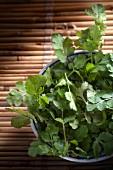 A bowl of fresh coriander