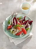Fennel and grapefruit salad with trevisiano