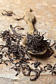 Sri Lanka black tea on a wooden spoon