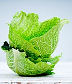 A stack of savoy cabbage leaves