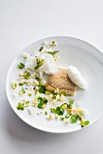 Angelfish with spring vegetables and edible flowers