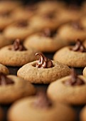 Espresso and hazelnut biscuits decorated with chocolate spread (close-up)