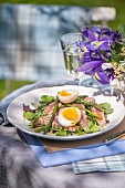 Asparagus salad with tuna fish and egg