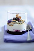 Power quark with dried fruits and nuts