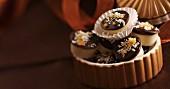White chocolate apricot truffles