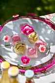 Colourful petit fours under mesh cake cover decorated with crocheted flowers on garden table