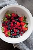 Frisch gewaschene Beeren im Sieb (Aufsicht)