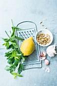 An arrangement of mint, lemon, pine nuts and garlic