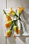 Zucchiniblüten auf Tuch