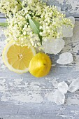 Lemons, rock sugar and elderflowers