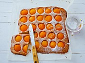 An apricot tray bake cake with icing sugar