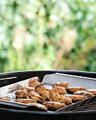 Chicken wings on a barbecue