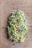 Radish sprouts on a wooden surface