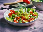 Mixed salad with tomatoes, cucumber, pepper and cos lettuce
