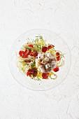 Ceviche von der Dorade mit Fenchel und Minze
