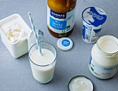Dairy products (milk, yoghurt, ayran, whey drink and quark)