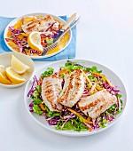 Gebratene Fischfilets auf Rotkohlsalat
