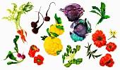 Verschiedene Gemüse vor weißem Hintergrund (Aufsicht)