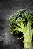 Broccoli on a grey surface