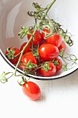 Cherry tomatoes in a white enamel bowl