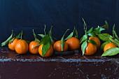 Orangen mit Stiel und Blättern