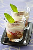 Nectarine tiramisu with anise in dessert glasses