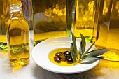 An arrangement featuring a bottle of olive oil and olives in oil with an olive sprig on a white plate