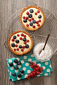 Tartlets with blueberries and red currants