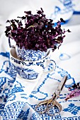 Red radish cress in a cup