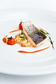 Crispy fried salmon trout on tomato risotto