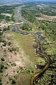 An aerial view of the Okavango Delta, Botswana