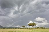 A rainbow in the Serengeti Wildlife Reserve, Tanzania, Africa