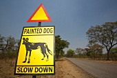 Warnschild mit Wildhund neben Strasse, Simbabwe, Afrika