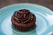 A chocolate cupcake with chocolate frosting on a blue plate
