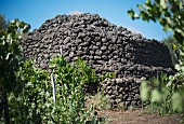 A tower of volcanic rock at the Pietradolce vineyard, Sicily, Italy
