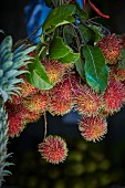 Rambutans from Sri Lanka
