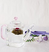 A tea flower in a glass teapot