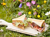 Sandwiches in a meadow, Bernese Oberland, Switzerland