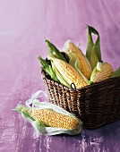 A basket of corn cobs