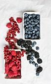 Various berries in cardboard punnets and in between