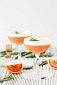 Blood orange & rosemary Martinis with beaten egg white