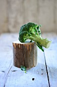 A broccoli floret on a piece of wood