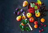 Heimisches Obststillleben (Paleo)