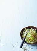 Raw white cabbage salad with bacon (Paleo)