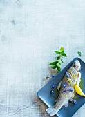Trout blue with lemon and borage flowers