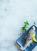 Forelle blau mit Zitrone & Borretschblüten