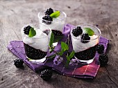 Panna cotta with blackberry jelly à la Hildegard von Bingen