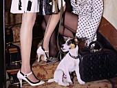 Zwei Frauen in Mantel, Pumps und Strumpfhose mit Hund auf Treppe