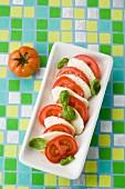 Tomato and mozzarella with basil